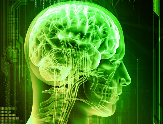 Drinking Green Tea Could Protect YourBrain?
