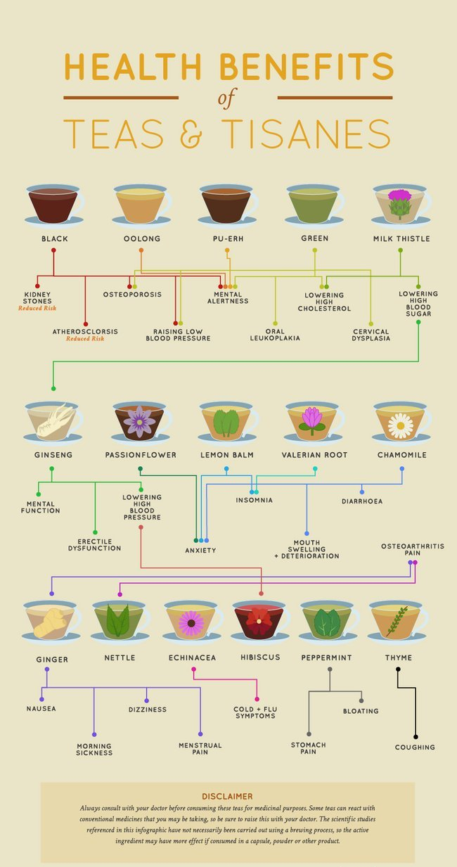 tea benefits infographic