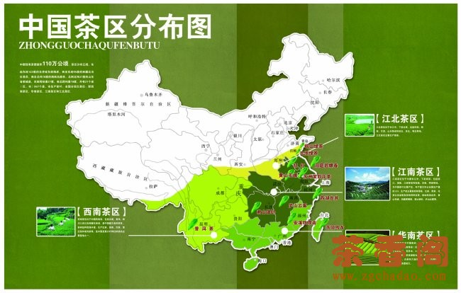 tea producing regions