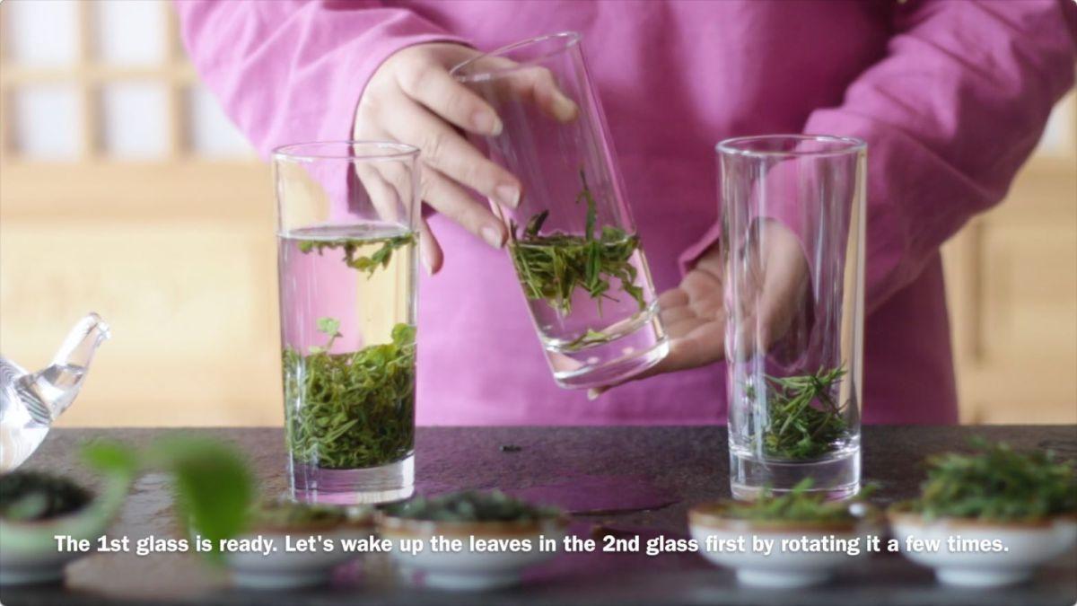 green tea brewing 3.jpg