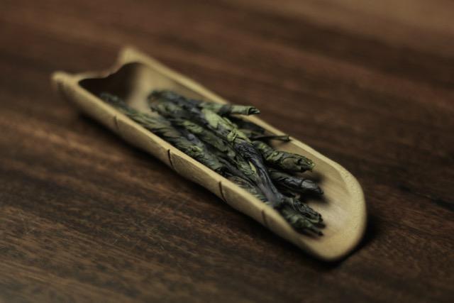 kuding tea needle tea
